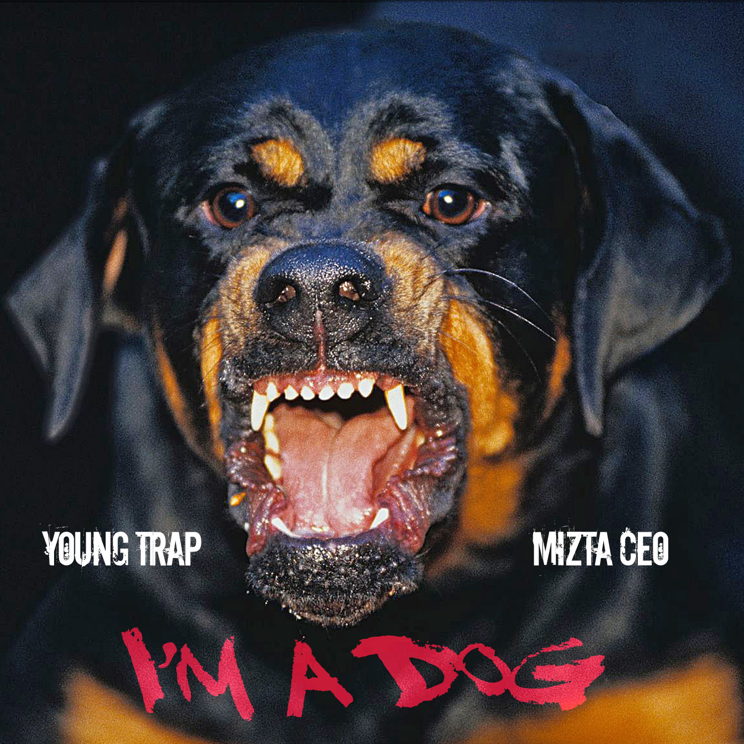 [Video] Young Trap (feat. Mizta CEO) – I'm a Dog | @youngtrapmuzic
