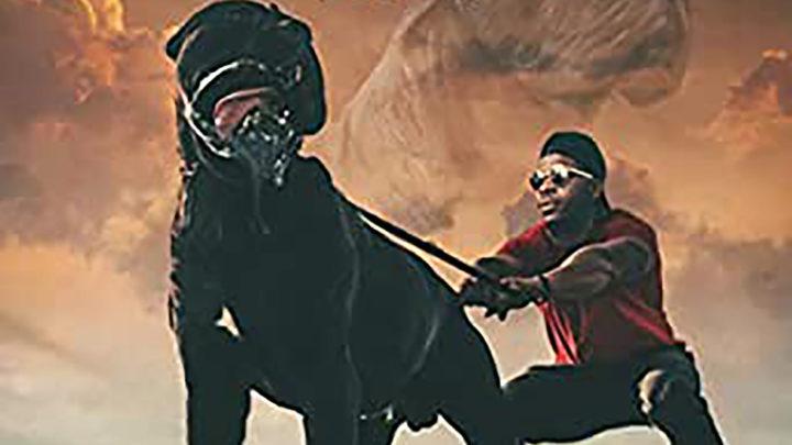 "Mack Ben Widdit ""The Big Way (Big Dawg)"" Single | @MackBenWiddit"
